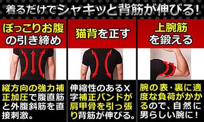スパルタックスTシャツ紹介